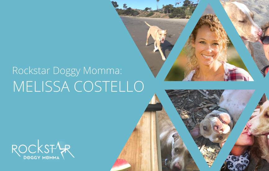 Rockstar Doggy Momma: Melissa Costello