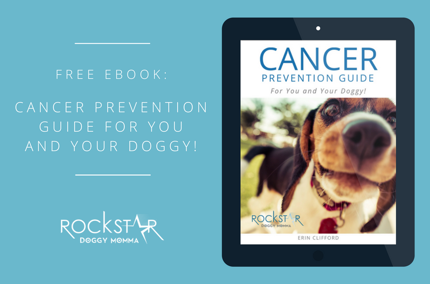 Free eBook: Cancer Prevention for You and Your Dog