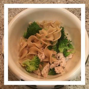pasta-dinner-for-dogs