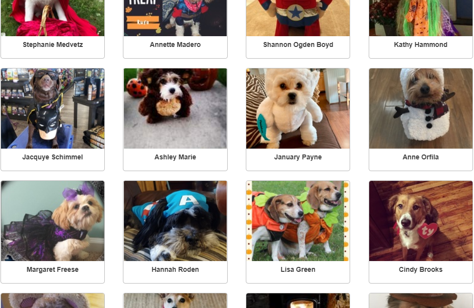 2018 Halloween Dog Costume Winners